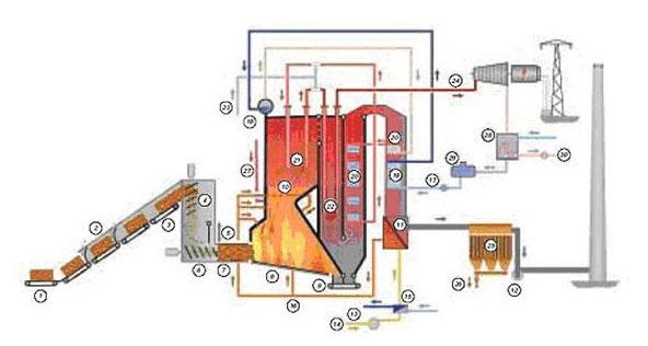 沼气锅炉结构图